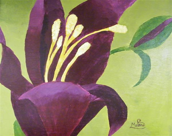 BHS Red Violet Flower MMalone