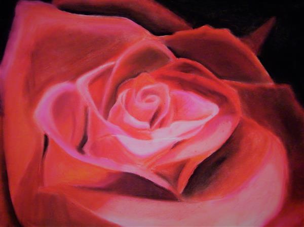 CKHS Red Rose SBiehl