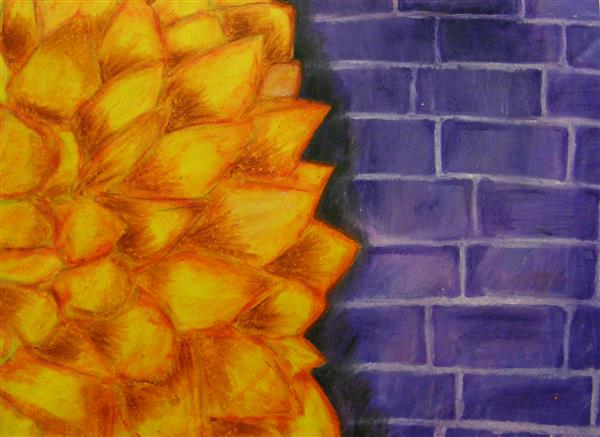 CKHS Wallflower LWilson