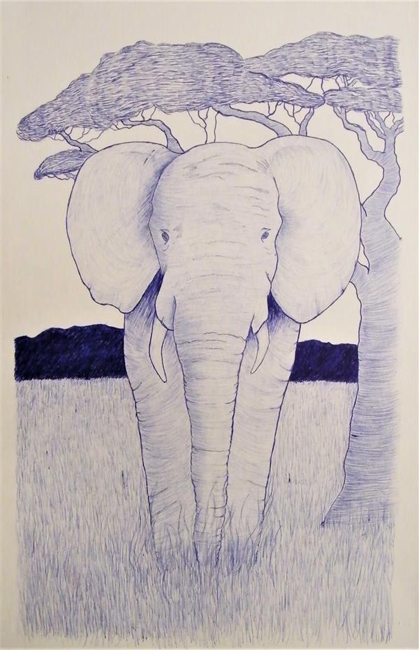 EscobarE Elephant