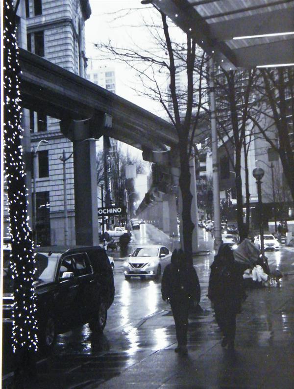 MCrane Seattle