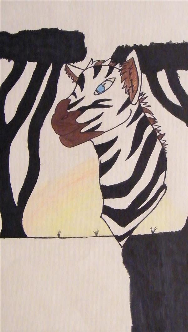 TaylorE Zebra