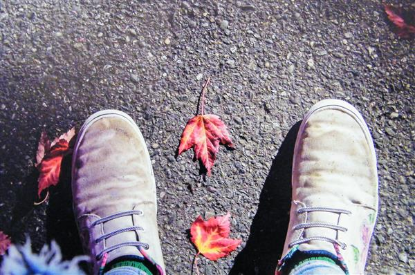 XPeck Leaf and Shoes