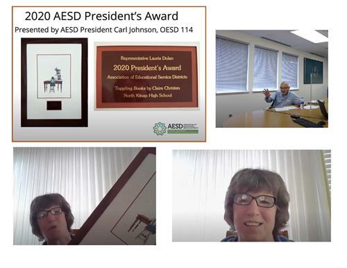 2020 President's Award presented to Laurie Dolan via Zoom